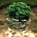 Dynamiczne rozwiązania proekologiczne